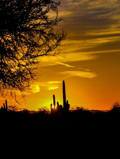 Arizona_sunset_medium