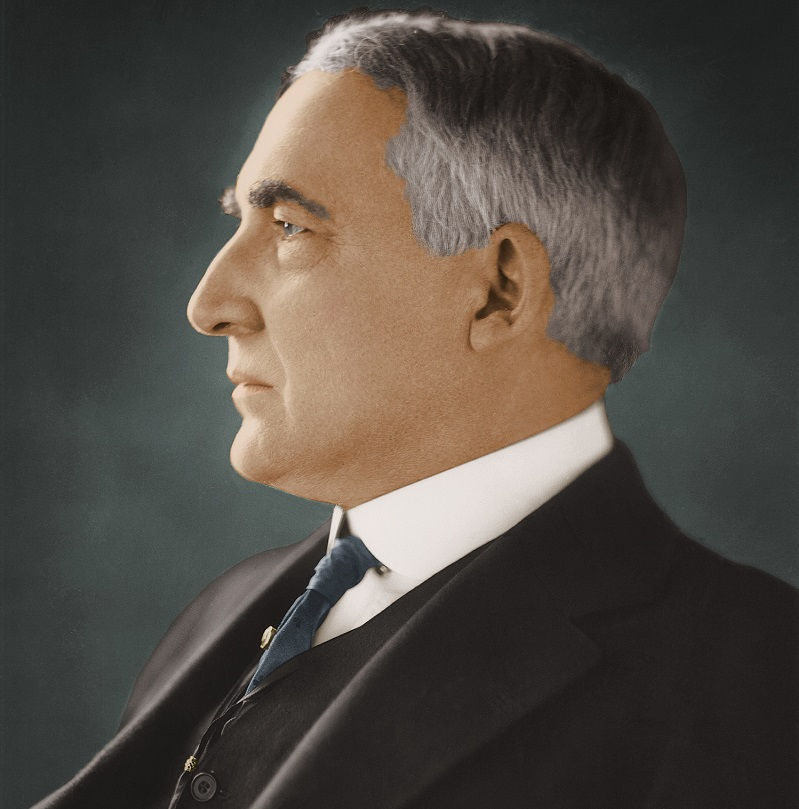 the life and times of 29th president of the united states warren g harding