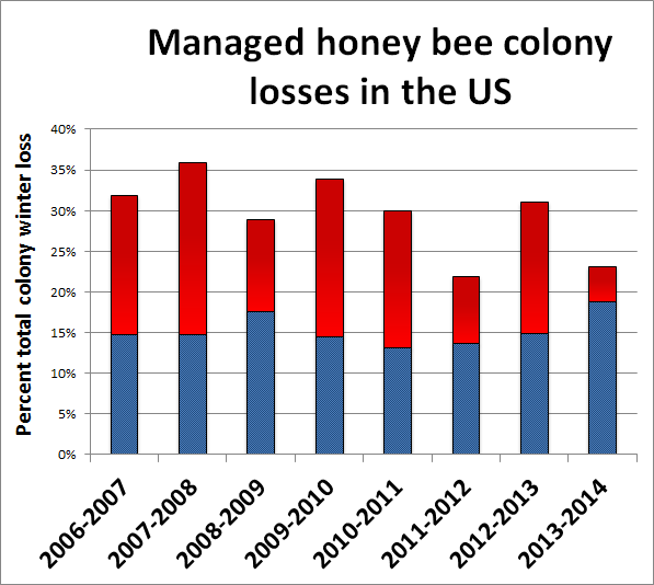 Are pesticides killing all the honeybees? It's complicated ...