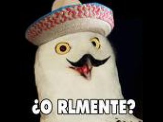 Orlymente_medium