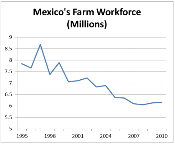 Mexico_s_farm_workforce