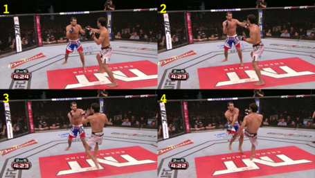 Mousasi_leg_kick_medium