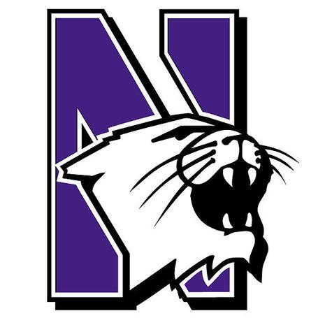 Logo-northwestern-wildcats-575x575.s600x600_medium
