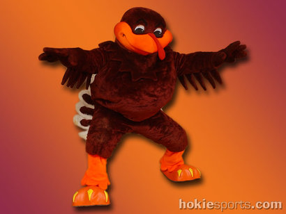 Hokiebird1024