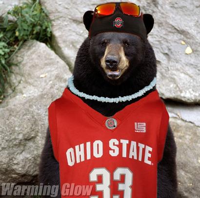 Ohio-state-bear