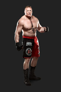 Lesnar_wwe_gear_large