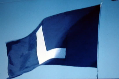 Cubslflag