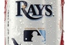12-oz.-tb-rays-budweiser-can_small