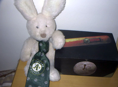 Rabbitball2