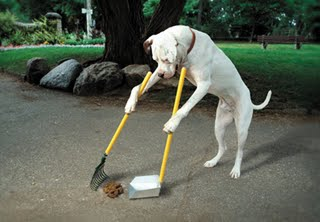 Doggie-pooper-scooper-788310_medium