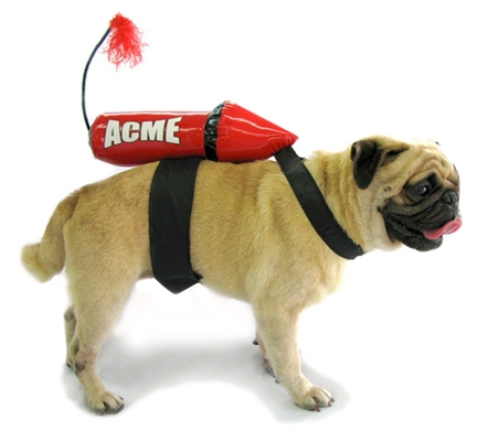Acme-rocket-costume-for-dogs_medium