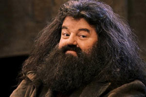 3907799-sym_hagrid_medium