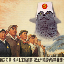 Chairman_meow