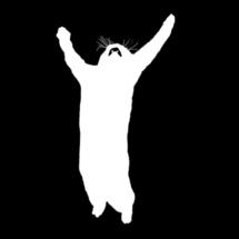Fuck_you_i_am_cat_copy