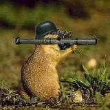 Bazooka_squirrel