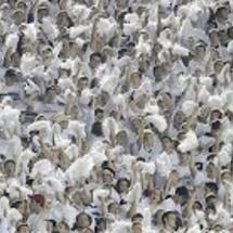 Penn-state-fans
