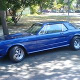 Mustang_pic