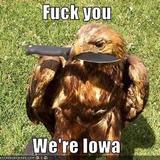 Hawkknife