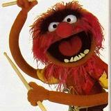 Muppets-animal