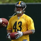 2010_troy_polamalu_127--nfl_medium_540_360