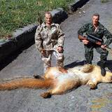 Squirrel_hunters