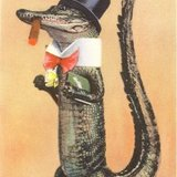 Alligator-in-top-hat