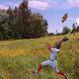 Nyjer_morgan_butterfly
