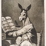 Goya_donkey