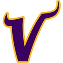 Minnesota-vikings-alternate-logo-primary