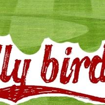 Rallybirdslogosmall