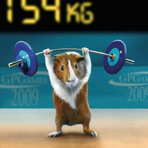 Animal_olympics_02