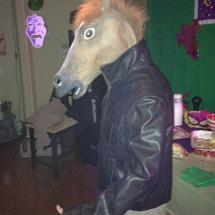 Look_at_my_horse