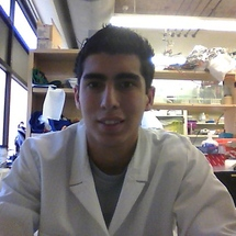 In_lab