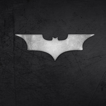 Batman_logo-wallpaper-480x800