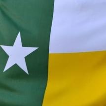 Butexasflag