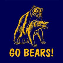 Go_bears_detail_01