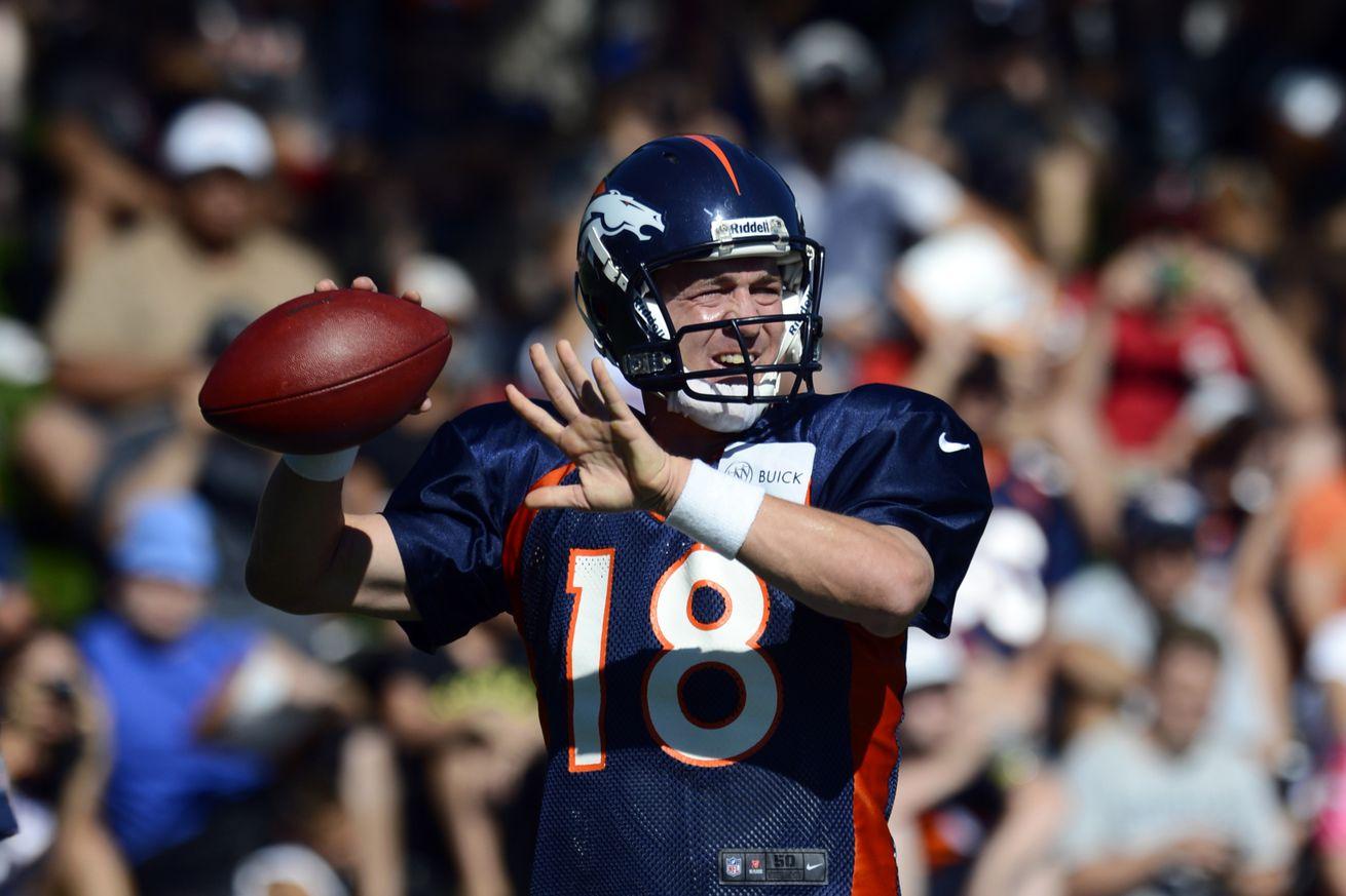 Peyton Manning Career Stats at NFLcom