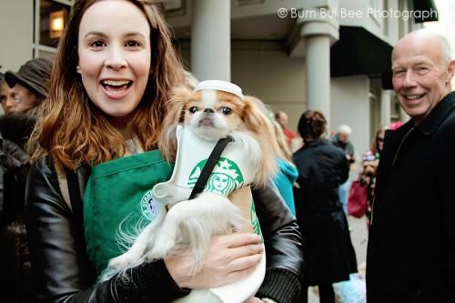 Cute-Dogs-in-Costumes.jpg