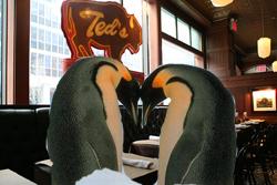 2011_penguins_in_love1.jpg
