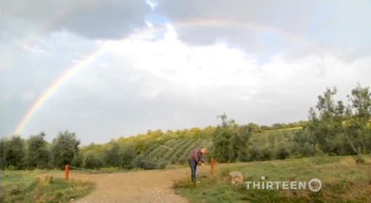 eric-ripert-rainbow-still.jpg