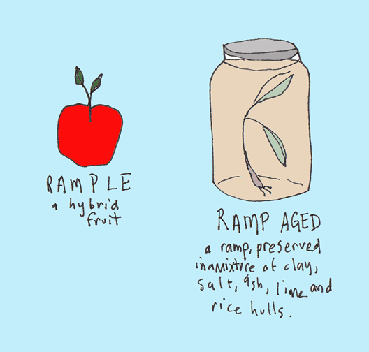 unmade-ramp-dishes-2.png