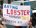 2008_06_whitherthelobster.jpg