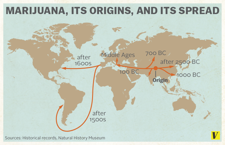 the historical use of marijuana in china in 2727 bc Complete world history of marijuana use with embedded videos from around the web 6,000 bce cannabis seeds and oil used for food in china bc, canada, was.