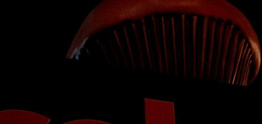 2007_10_cupcake.jpg