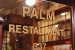 20080301-001-palm.jpg