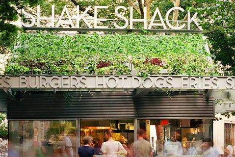shack%20shack%20500.jpg