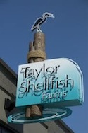 taylor-shellfish.jpg