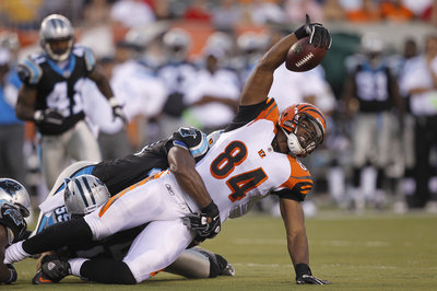 Panthers at Bengals NFL Capsule
