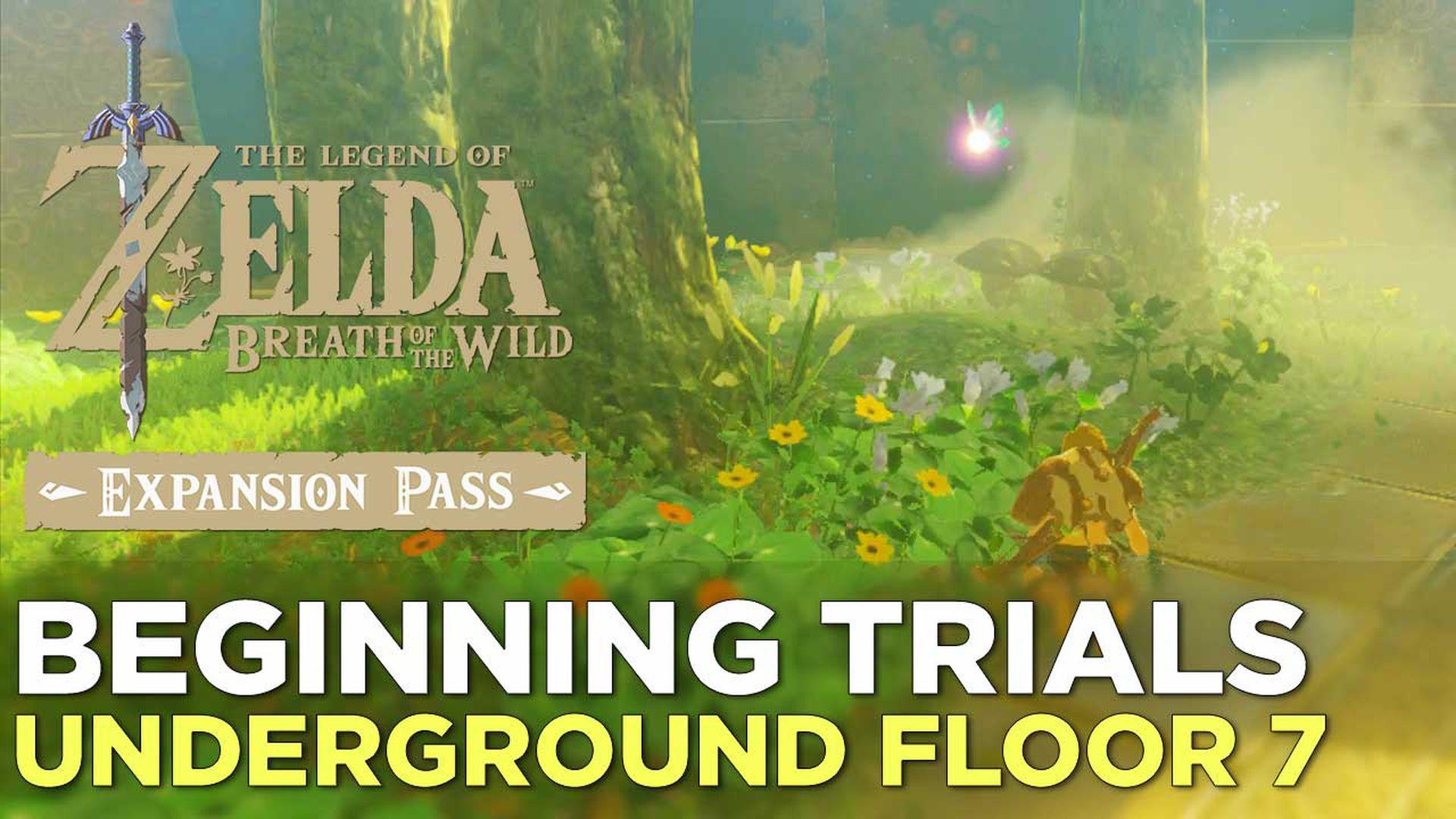 Zelda Breath of the Wild guide: Trial of the Sword: Beginning Trials