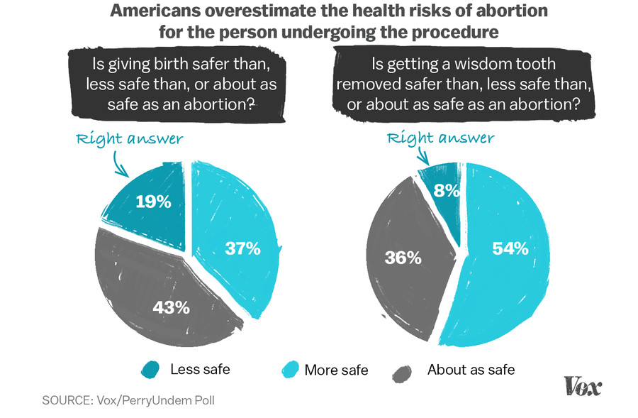 We Polled  Americans About Abortion This Is What They Got  Abortion Safety Chart